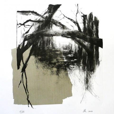 eaux et forêts - litho 50x 70cm - papier arche 300g et papier de soie